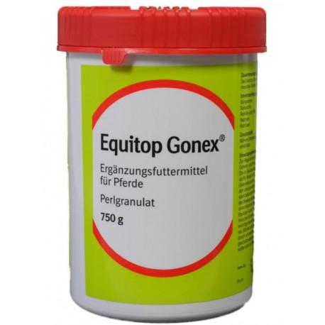 Equitop Gonex